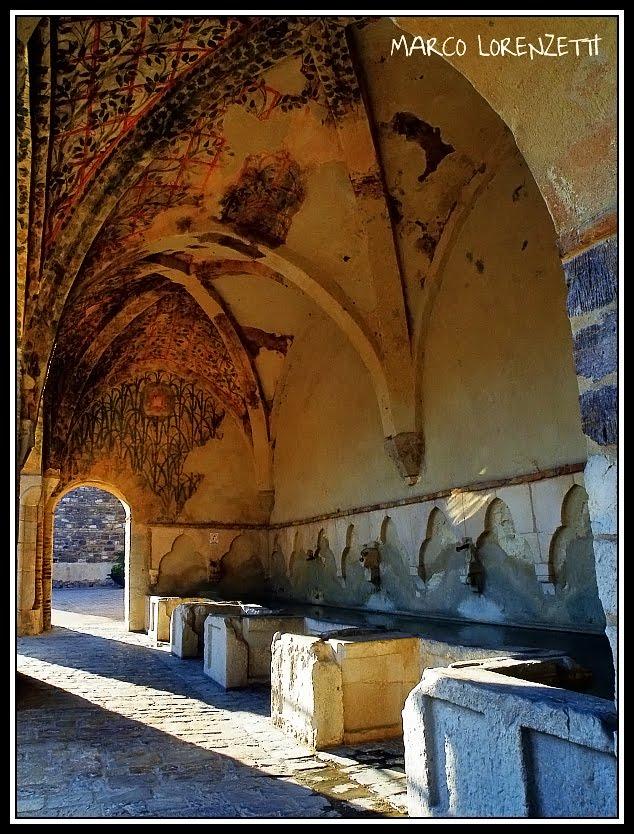 una bellissima fotogentilmente concessa da Marco Lorenzetti