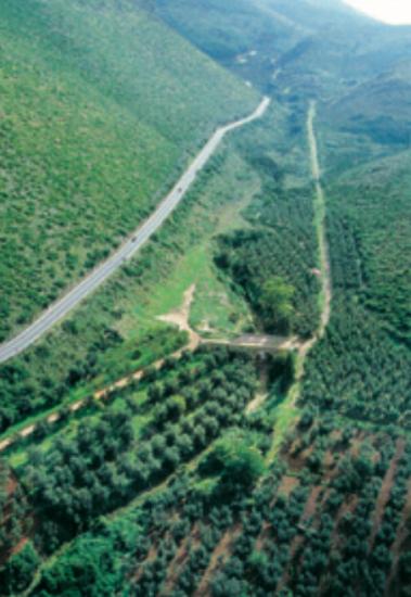 due strade nella Valle di S.Andrea