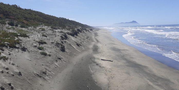 spiaggia-Sabaudia-696x350